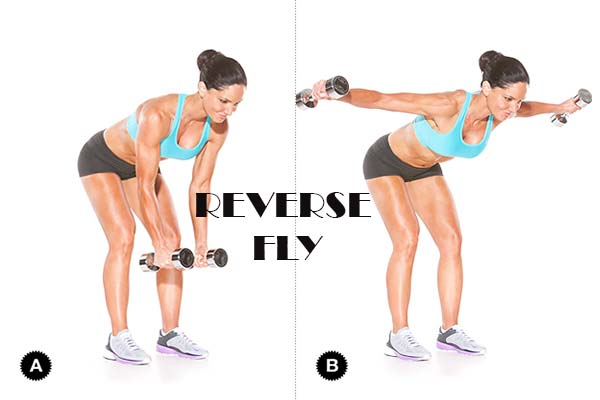 waist trainer exercises- reverse fly workout